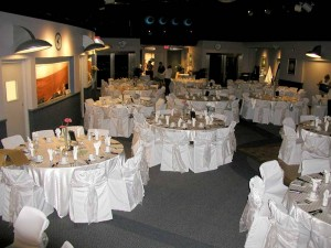 Take advantage of our large open room for your next reception