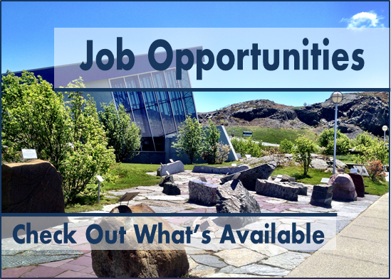 Job Opportunities Feature