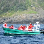 O'Brien's Whale & Bird Tours